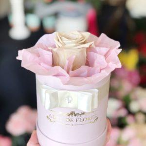 Box z beżową wieczną różą