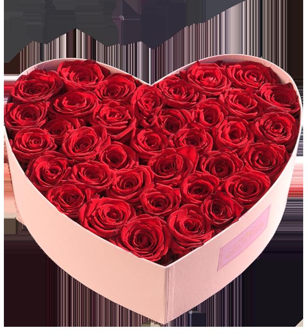 gdynia kwiaciarnia 25