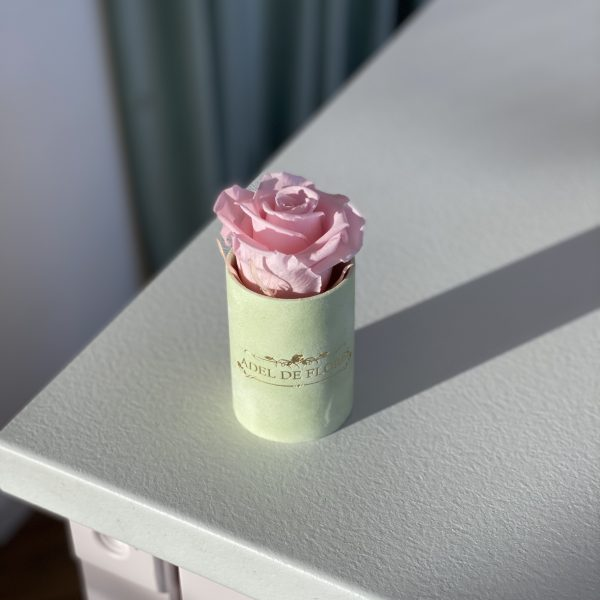 gdynia kwiaciarnia 55